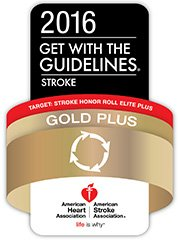 2013 GWTG Gold Plus Award for Stroke